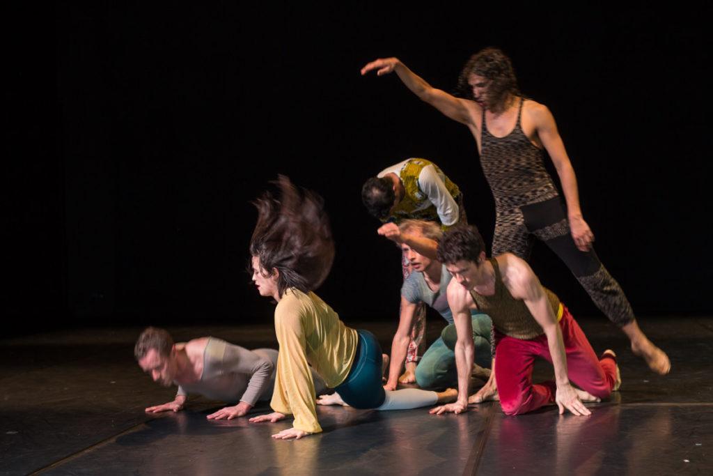 Journées de danse contemporaine suisse 1